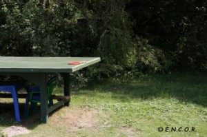Table de Ping-pong-web